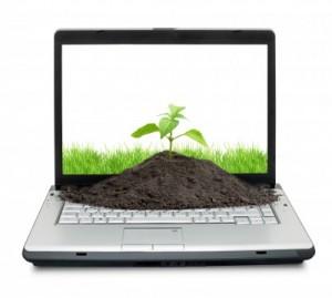Web Ecolo