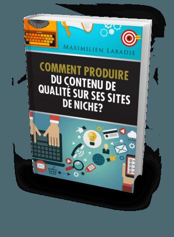 Guide Web & SEO : Découvre comment produire du contenu quali pour tes sites de niche