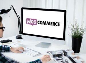 WooCommerce : le kit de démarrage pour les débutants